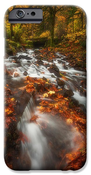 Tree Art Print iPhone Cases - Autumn in the Gorge iPhone Case by Darren  White