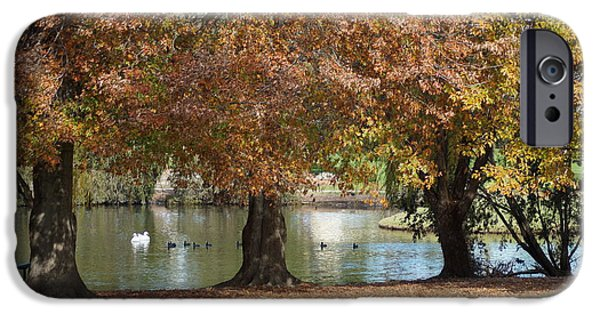 Swans... iPhone Cases - Autumn In The Park iPhone Case by Merrin Jeff