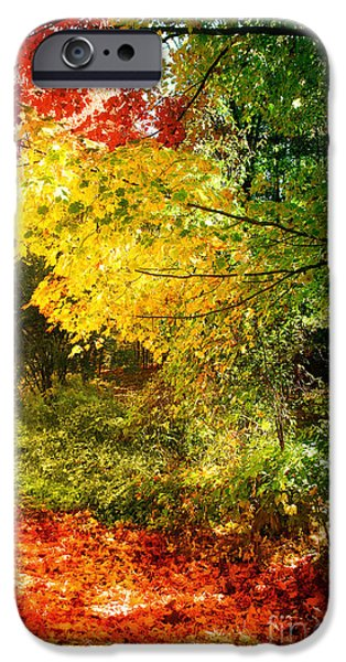 Leaf Change iPhone Cases - Autumn in Vermont iPhone Case by Mindy Sommers