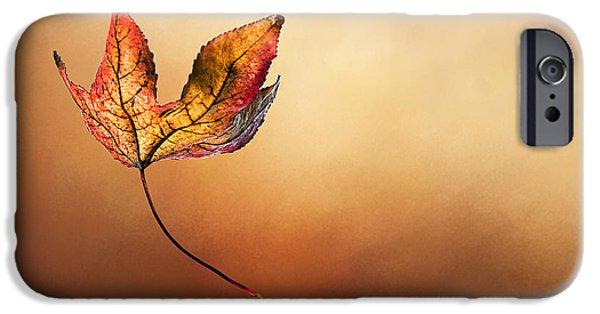 Colors Of Autumn iPhone Cases - Autumn Leaf Falling by Kaye Menner iPhone Case by Kaye Menner