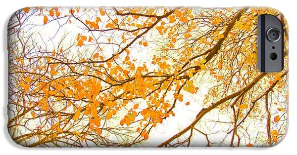 Shape iPhone Cases - Autumn Leaves iPhone Case by Az Jackson