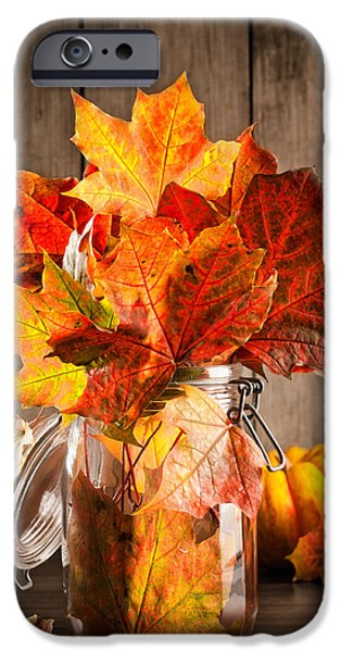 Gourd iPhone Cases - Autumn Leaves Still Life iPhone Case by Amanda And Christopher Elwell
