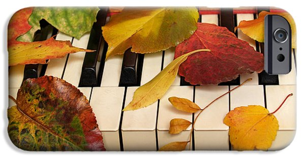 Piano iPhone Cases - Autumn Leaves Tickle the Ivories iPhone Case by Anna Lisa Yoder
