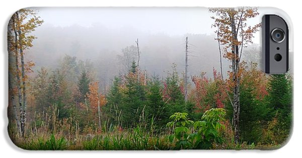 Mist iPhone Cases - Autumn Mist iPhone Case by Mike Breau