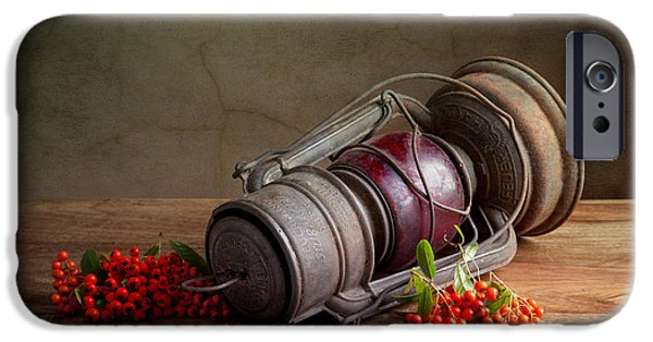 Concept Photographs iPhone Cases - Autumn iPhone Case by Nailia Schwarz