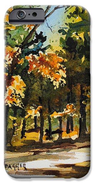 Natchez Trace Parkway iPhone Cases - Autumn On The Natchez Trace iPhone Case by Spencer Meagher