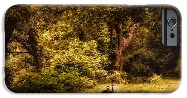 Autumn Foliage Photographs iPhone Cases - Autumn Outing iPhone Case by Jessica Jenney