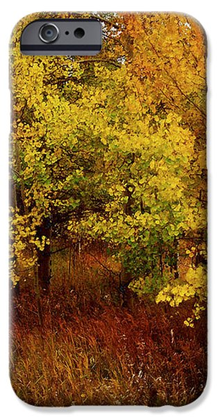 Autumn Palette iPhone Case by Carol Cavalaris