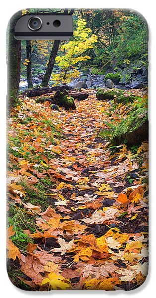 Paths iPhone Cases - Autumn Path iPhone Case by Mike  Dawson