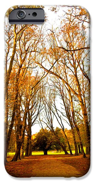 Pathway Mixed Media iPhone Cases - Autumn path iPhone Case by Svetlana Sewell