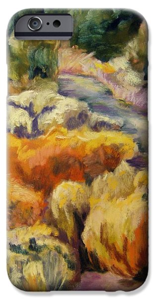 Pathway iPhone Cases - Autumn Pathway iPhone Case by Julia Evans