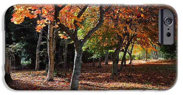 Cemetary iPhone Cases - Autumn Peace iPhone Case by Leah-Anne Thompson