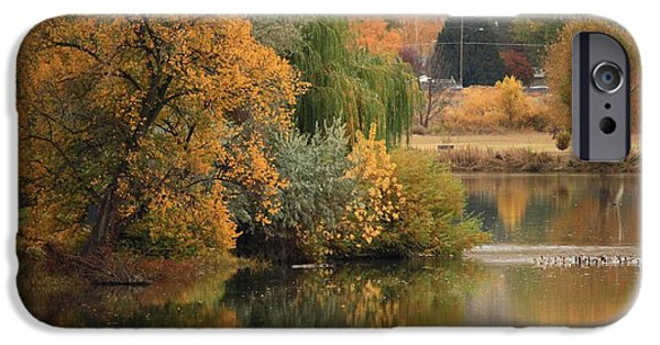 Autumn Scenes iPhone Cases - Autumn Reflection 41 iPhone Case by Carol Groenen