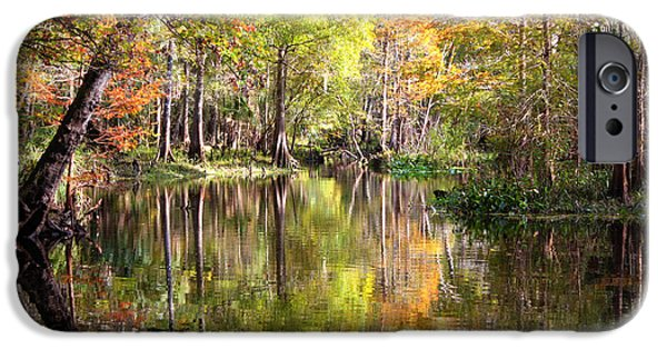 Reflections In River iPhone Cases - Autumn Reflection on Florida River iPhone Case by Carol Groenen