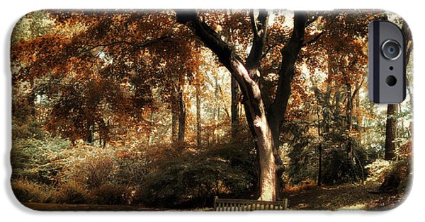 Dappled Light iPhone Cases - Autumn Repose iPhone Case by Jessica Jenney