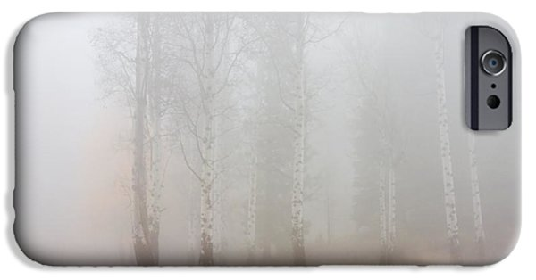 Fog Mist Photographs iPhone Cases - Autumn Reveals iPhone Case by Mike  Dawson