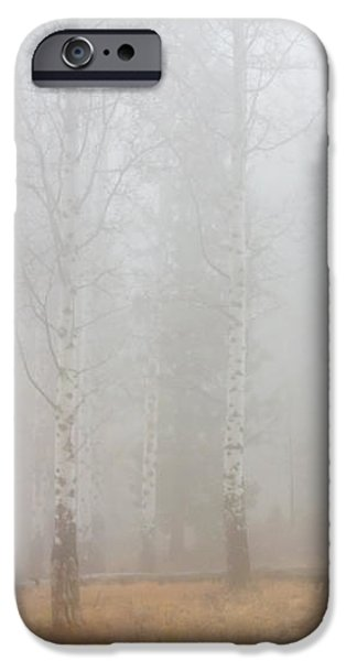 Autumn Reveals iPhone Case by Mike  Dawson