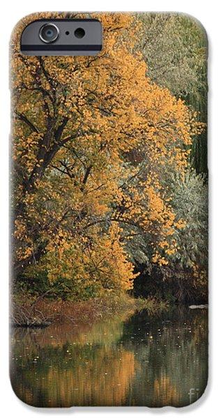 Autumn Riverbank iPhone Case by Carol Groenen