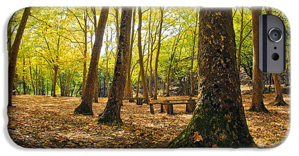 Red Carpet iPhone Cases - Autumn scenery iPhone Case by Carlos Caetano