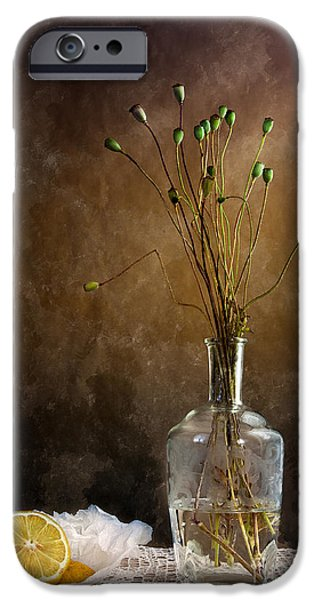 Composition iPhone Cases - Autumn Still Life iPhone Case by Nailia Schwarz