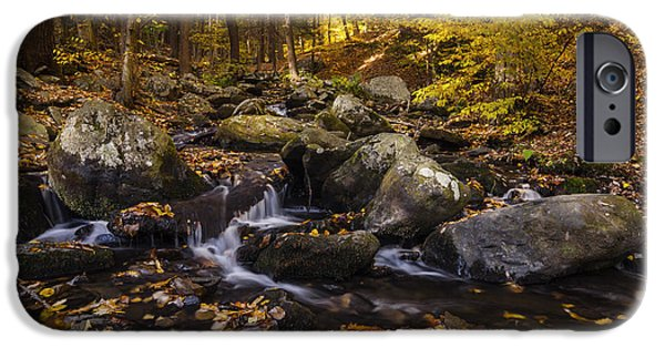 Overcast Day iPhone Cases - Autumn Stream in Bushkill Falls State Park Pennsylvania USA iPhone Case by Vishwanath Bhat