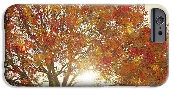 Abstract Digital Art iPhone Cases - Autumn Sunset - West Valley City Utah iPhone Case by Steve Ohlsen