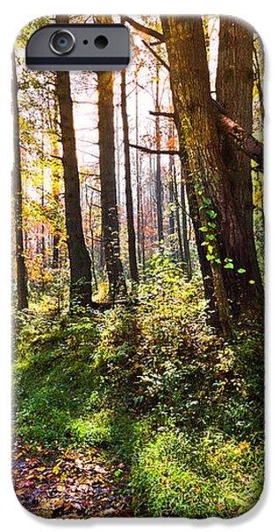 Autumn Trail iPhone Case by Debra and Dave Vanderlaan