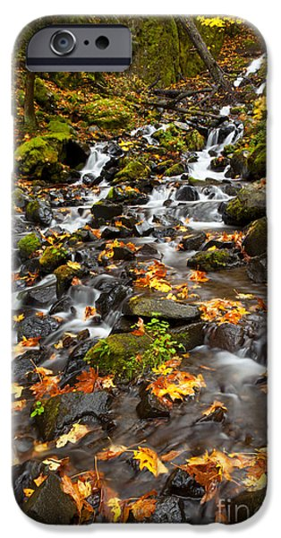 Maple Season iPhone Cases - Autumn Tumbles Down iPhone Case by Mike  Dawson