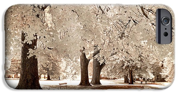 Infrared iPhone Cases - Autumn Walk iPhone Case by Paul W Faust -  Impressions of Light