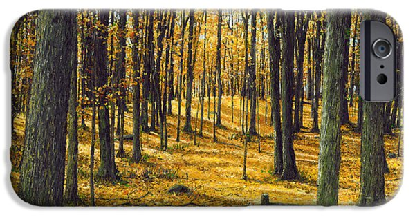 Fall iPhone Cases - Autumn Woodland iPhone Case by Doug Kreuger