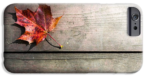 Board iPhone Cases - Autumnal Leaf on Wooden Planks iPhone Case by John Williams