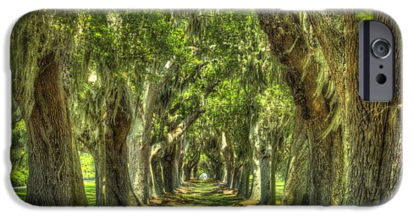 Constitution iPhone Cases - Avenue Of Oaks or Oak Alley St Simons Island GA iPhone Case by Reid Callaway