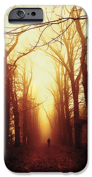 Fall iPhone Cases - Away iPhone Case by Joanna Jankowska