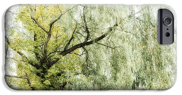 Nature Abstract iPhone Cases - Ba iPhone Case by SK Pfphotography