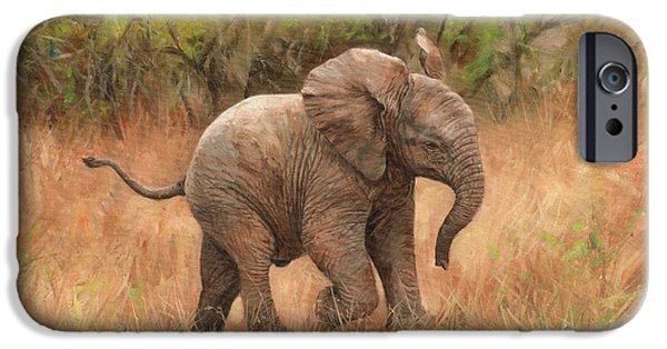 David iPhone Cases - Baby African Elelphant iPhone Case by David Stribbling