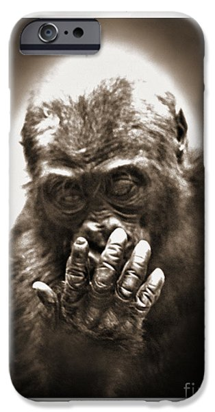 Bonding iPhone Cases - Baby Gorilla Studying His Hand digitally altered II iPhone Case by Jim Fitzpatrick