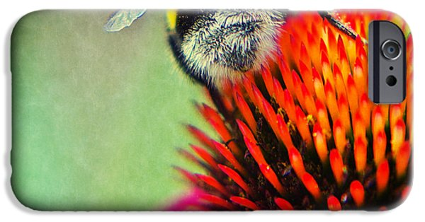 Macro Mixed Media iPhone Cases - Back Side iPhone Case by Angela Doelling AD DESIGN Photo and PhotoArt