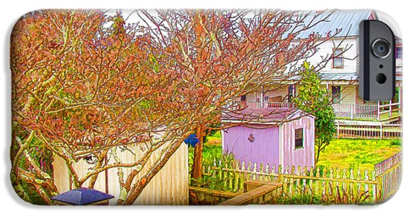 Asphalt Paintings iPhone Cases - Back yard storage shed  iPhone Case by Lanjee Chee