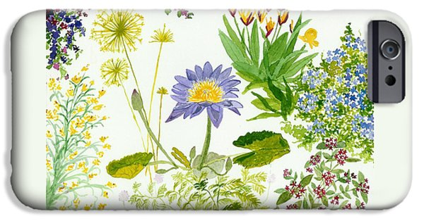Best Sellers -  - Nature Study Paintings iPhone Cases - Backyard Study iPhone Case by Anne Marie Brown