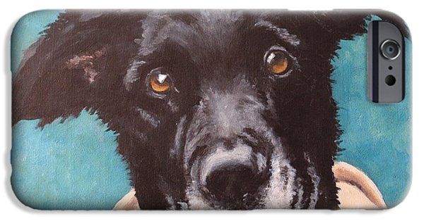 Dog Close-up iPhone Cases - Bailey Dog of Honor iPhone Case by Carol Russell