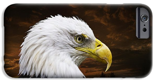 Decor iPhone Cases - Bald Eagle - Freedom and Hope - Artist Cris Hayes iPhone Case by Cris Hayes