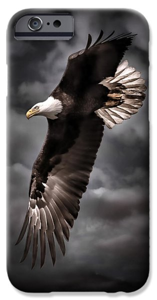 Killer B iPhone Cases - Bald Eagle At Dusk D3876 iPhone Case by Wes and Dotty Weber
