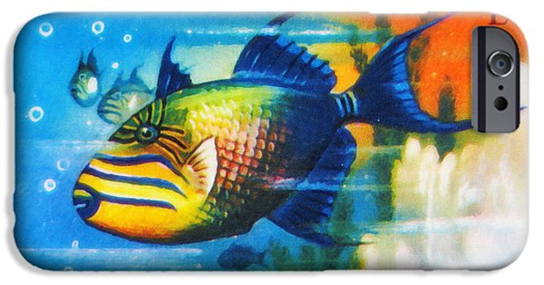Zoological Paintings iPhone Cases - Balistes Bursa  iPhone Case by Lanjee Chee
