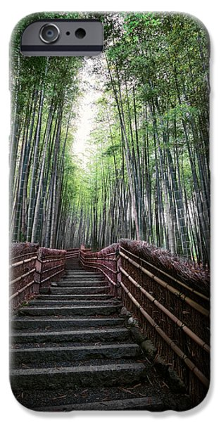 Bamboo Fence iPhone Cases - BAMBOO FOREST of JAPAN iPhone Case by Daniel Hagerman