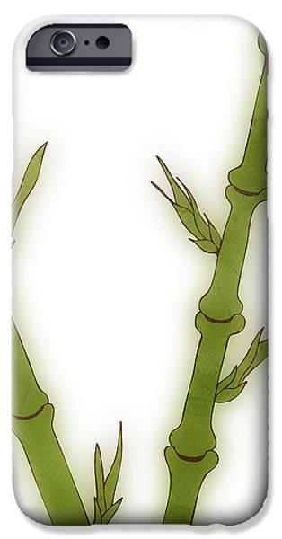 Bamboo iPhone Case by Frank Tschakert