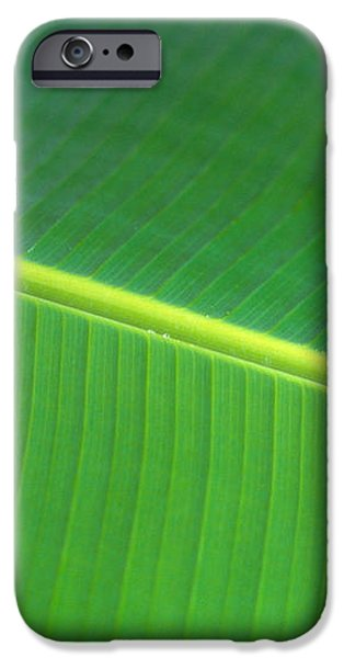 Banana Leaf iPhone Case by Dana Edmunds - Printscapes