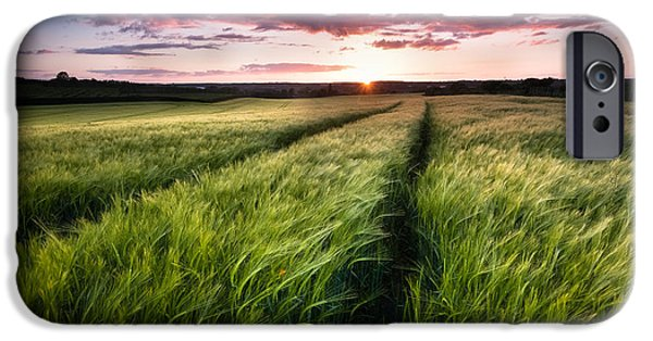 Crops iPhone Cases - Barley fields at Sunset iPhone Case by Ian Hufton