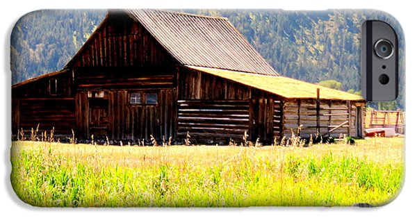 Old Barn iPhone Cases - Barn on Mormon Row iPhone Case by Michelle DeLore