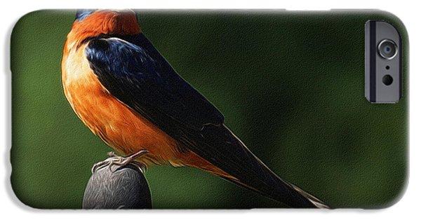 Barn Swallow iPhone Cases - Barn Swallow Digital Art iPhone Case by Ernie Echols