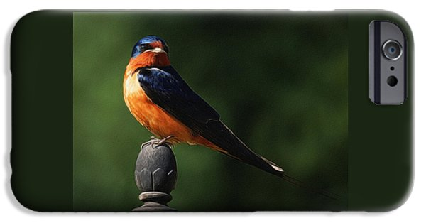 Barn Swallow iPhone Cases - Barn Swallow Digital Art iPhone Case by Ernie Echols